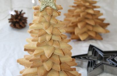 Sapin Biscuit 3D