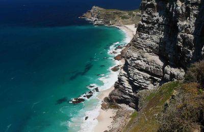 Afrique du Sud - 8 - Le sud du Cap