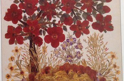 Les fleurs (de Terre Sainte )séchées  du Sultan Sultan Abdülhamid II