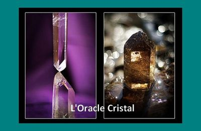 Oracle Cristal