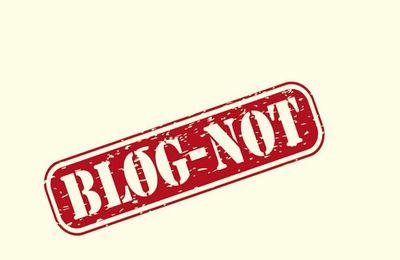 Critique de mon roman Blog-not dans La Cause Littéraire