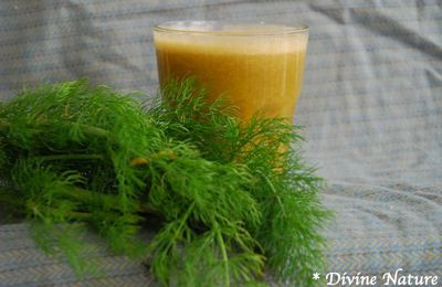 Jus pomme - fenouil