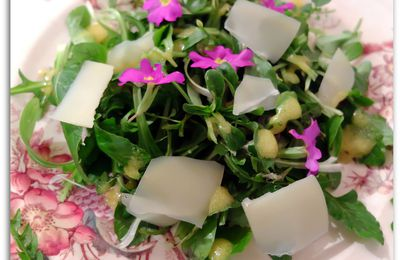 SALADE DES PREMIERES HERBES SAUVAGES