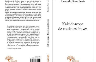 De la télékinésie du verbe à Kaléidoscope de couleurs fauves (par Anderson Dovilas)