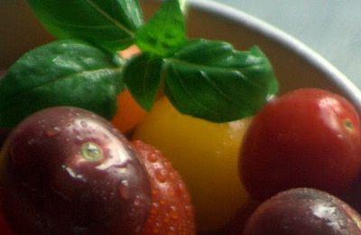 Les petites recettes de l'été : le temps des tartes / Tartes aux tomates multicolores