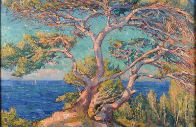 Les mini-contes de l'été - Carmen Montet - La légende des pins parasols