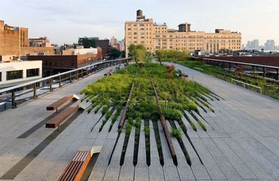 HIGH LINE PARK -  Joshua David + Robert Hammond