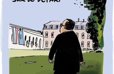 François Hollande, portrait officiel 2017