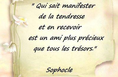 Citation de Sophocle sur la tendresse