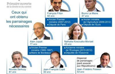 Résultats premier tour des primaires de la droite à Cergy et grandes villes du Val d'Oise