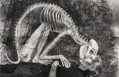 "Expo Duo Contemporaine: Roger BALLEN et Hans LEMMEN ""UNLEASHED"""
