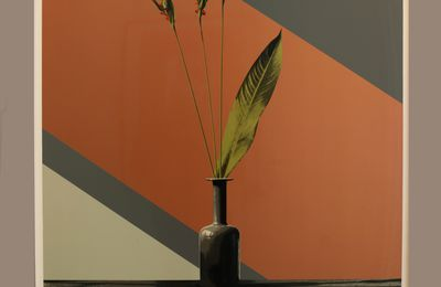 "Expo Photographie Contemporaine:Robert MAPPLETHORPE ""Objects"""