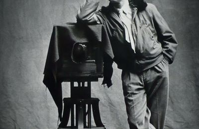 Expo Retrospective Contemporaine: Irving PENN