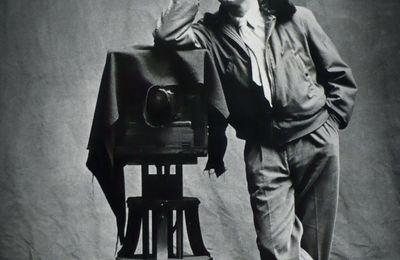 Expo Retrospective Contemporaine: Irving PENN