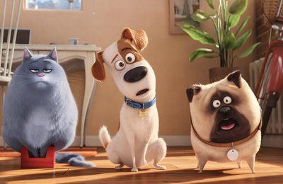 Box Office : « Comme des bêtes » reprend la tête, « Star Trek » déçoit