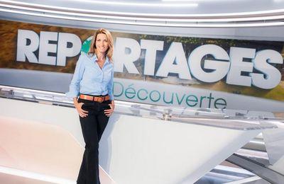 Reportages Découverte : « La magie des îles Anglo-Normandes » ce samedi à 13h30 sur TF1