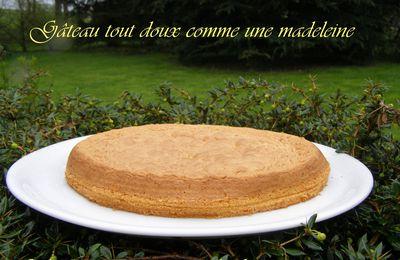 Gâteau tout doux comme une madeleine