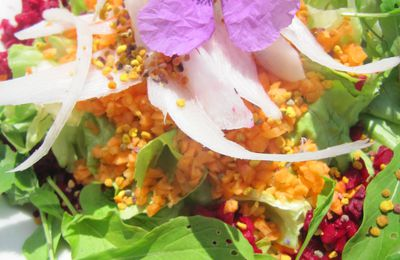 SALADE COLOREE AUX POLLENS POLYFLORAL BALLOT-FLURIN