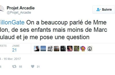 Question à propos du suppléant de Fillon