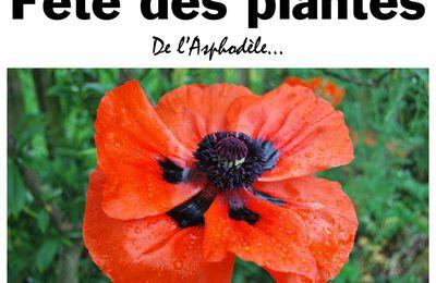 La Roche-sur-Yon. 15eédition de la «Fête des plantes» samedi 16 avril 2016.