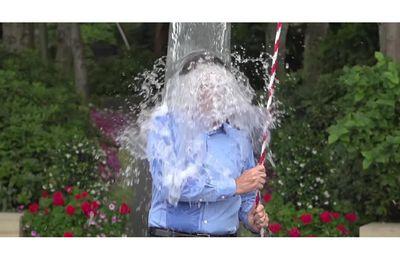 Licenciée pour avoir participé au défi Facebook Ice Bucket Challenge: A l'eau ou au resto et.... direct Pôle Emploi !