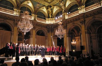 voices choeur international, un ensemble vocal unique en france par son répertoire et sa composition