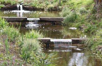 Visite du jardin d'eau et de poésie