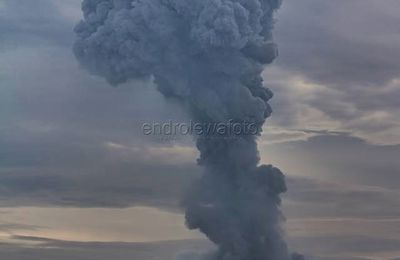 Situation in Sinabung, La Fournaise, Nishinoshima and Vesuvius.
