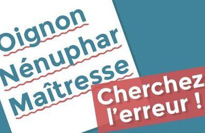«Ognon», «nénufar», accent circonflexe: la réforme surprise de l'orthographe