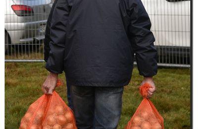 Rauville La Place, foire ès morts : citrouilles et oignons