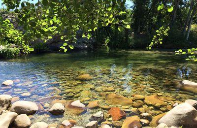 Jour de bains en rivière