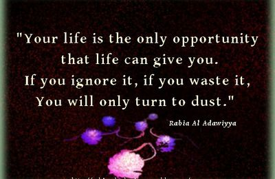 Your life is the only opportunity