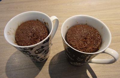 Mug Cake Chocolat Seche