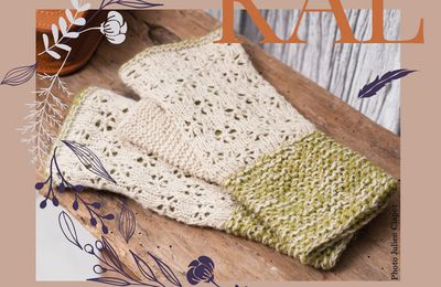KAL Mitaines - Passion Tricot n°4