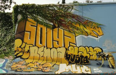Street Art : Graffitis & Fresques Murales 34172 Montpellier