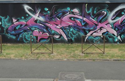 Street Art : Graffitis & Fresques Murales 19031 Brive la Gaillarde