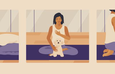 Try Doing Doga With Your Dog
