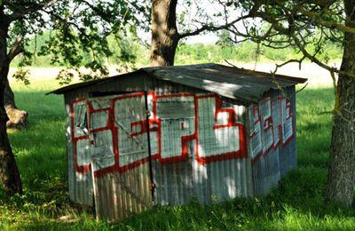 Art urbain et campagne