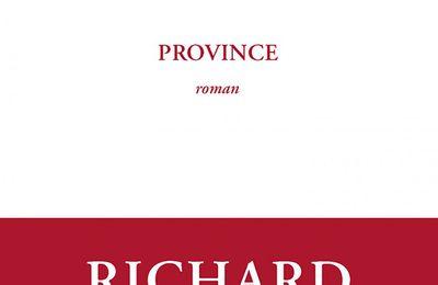 Province de Richard Millet