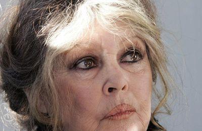 """""""Stop à l'Aïd el Kebir humain!"""" Le message choc de Brigitte Bardot après l'attentat de Nice"""