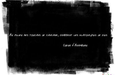 Poème - Slogan - Coeur d'aramburu