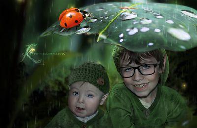 Mes petits elfes