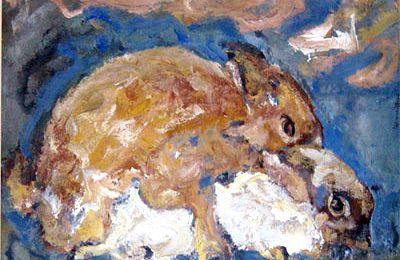 Saint lapin