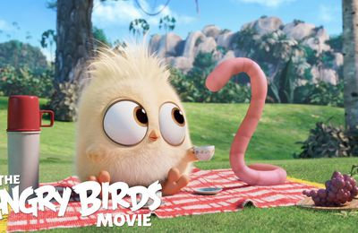 Mignon Le Angry Birds - Film - Wallpaper - Free