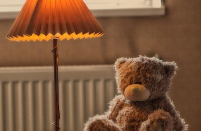 Ourson - Lampe - Wallpaper -Free