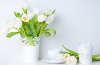 Fleurs - Vase - Tulipes - Blanc - Wallpaper - Free