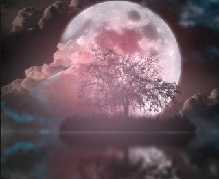 Cure lunaire du printemps