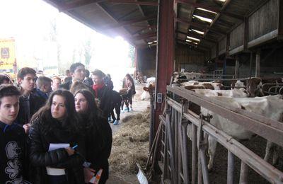 CAP 1 : en visite à la ferme...