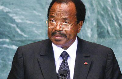 Le Tchad propose son soutien au Cameroun pour combattre Boko Haram