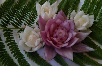 vidéo pour réaliser une fleur de lotus en oignon